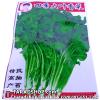 เมล็ดผัก ชี (ชนิดซอง)