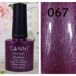 สีเจล CANNI 067