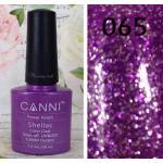 สีเจล CANNI 065