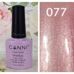 สีเจล CANNI 077