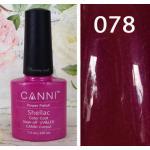 สีเจล CANNI 078