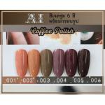 สีเจล AI ชุด Coffee Pollsh มี 6ขวด โทนสีน้ำตาล พร้อมแถมกรอบรูปในชุด