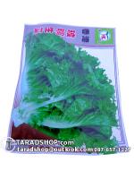 เมล็ดผัก สลัดแก้ว (ชนิดซอง)