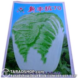 เมล็ดผัก กาดขาว (ชนิดซอง)