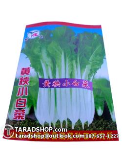 เมล็ดพันธุ์ผัก ผักกวางตุ้งดอก (ชนิดซอง)