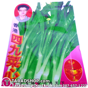 เมล็ดผัก กาดกวางตุ้งดอก (ชนิดซอง)