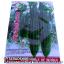 เมล็ดผัก บวบเหลียม-ยาว (ชนิดซอง) thumbnail 1