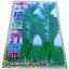เมล็ดผัก ผักกาด ค่ม (ชนิดซอง) thumbnail 1