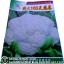 เมล็ดผัก กาดดอก (ชนิดซอง) thumbnail 1