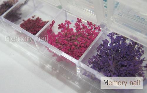 ดอกไม้แห้ง,ดอกไม้สำหรับต่อเล็บ,ต่อเล็บอะคริลิค ฝังดอกไม้แห้ง