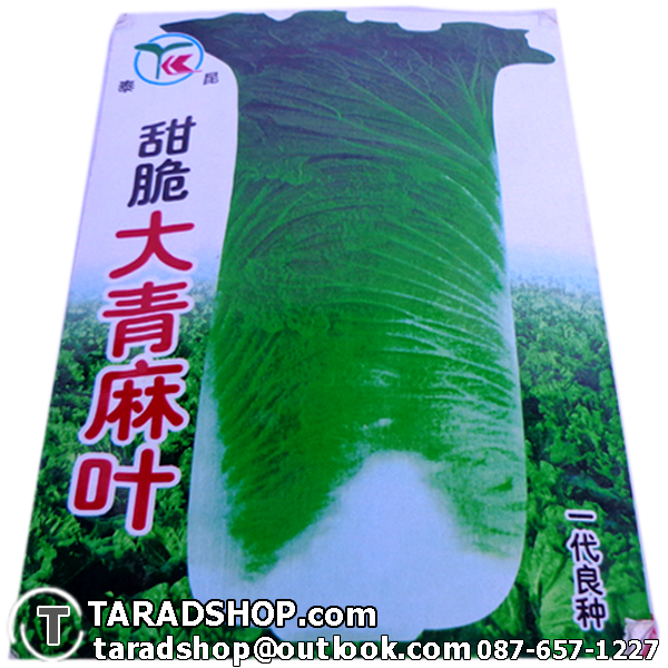 เมล็ดผัก กาดขาว ต้นใหญ่ (ชนิดซอง)