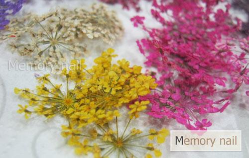 ดอกไม้แห้ง เป็นช่อ 12 สี