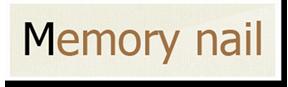 http://www.memorynail.com/