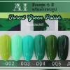 สีเจล AI ชุด Forest Green Polish มี 6ขวด โทนสีเขียว พร้อมแถมกรอบรูปในชุด