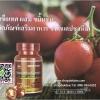 มะเขือเทศผสมขมิ้นชัน (ผลิตภัณฑ์เสริมอาหาร ชนิดแคปซูลนิ่ม) Tomato Plus Turmeric Green World U.S.A
