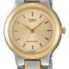 นาฬิกา คาสิโอ Casio STANDARD Analog'women รุ่น LTP-1131G-9A