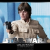 Hot Toys DX07 Luke Skywalker Bespin Edition 1/6 Scale Collectible Figure NEW