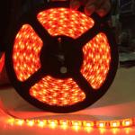 ไฟริบบิ้นสีแดง LED 60 ดวง 5M 12V
