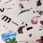 Early Learning Flash Cards - a - z alphabet