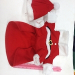 ชุดน้องหมา ซานตาครอส+หมวก