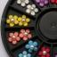 ดอกไม้พลาสติกทรงกลม ติดมุกตรงกลาง คละ6สี กล่องกลมดำ thumbnail 3