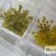 ดอกไม้แห้ง เป็นช่อ 12 สี thumbnail 4