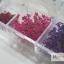 ดอกไม้แห้ง เป็นช่อ 12 สี thumbnail 6