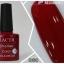 HACTR สีเจล สีสวย เนื้อแน่น คุณภาพดี รุ่นที่ 2 thumbnail 7