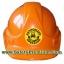 สติ้กเกอร์ติดหมวกโฟร์คลิฟต์ Authorized Forklift Operator thumbnail 1