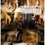 สายคล้องข้อมือกล้องหนังแท้ รุ่นพรีเมี่ยม Premium Leather Wrist Starp thumbnail 12