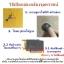 กล้องจุลทรรศน์คุณภาพดี 40x - 500x (AXS1008) thumbnail 10