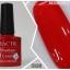 HACTR สีเจล สีสวย เนื้อแน่น คุณภาพดี รุ่นที่ 2 thumbnail 14