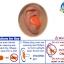EAR PLUG mack's 6 pairs (kids size waterproof) thumbnail 6