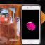 เคสหนังแท้ Apple iPhone 7 และ 7 Plus จาก CASEME [Pre-order] thumbnail 9