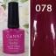 ยาทาเล็บเจล สีเจล CANNI thumbnail 26