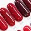 สีทาเล็บเจล EN.OU ยกเซ็ต 12ขวด โทนสีแดง GLASS RED WINE thumbnail 4
