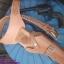 รหัสซองปืน KCB thumbnail 1