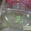 เจลต่อเล็บกากเพชร เกล็ดหยาบ ผสมละเอียด รหัส GG-003 ขนาด 0.4 ออนซ์ 12กระปุก thumbnail 5