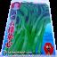 เมล็ดผัก ผักกาดจ้อน (ชนิดซอง)