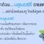บีจีเอ็ม อายแคร์ซอท์ฟเจล BGM Eyecare Soft gel บำรุงสายตา thumbnail 4