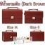 กระเป๋ากล้อง รุ่น Compact BoxBag สำหรับ Mirrorless และ DSLR thumbnail 23