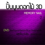 DVD สอนปั้นนูน 3D