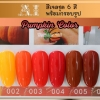 สีเจล AI ชุด Pumpki Color มี 6ขวด โทนสีส้มแดง พร้อมแถมกรอบรูปในชุด
