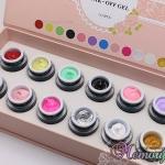 สีเจล สำหรับเพ้นท์เล็บ และเพ้นท์นูน SIYI Color Gel For Nail Painting