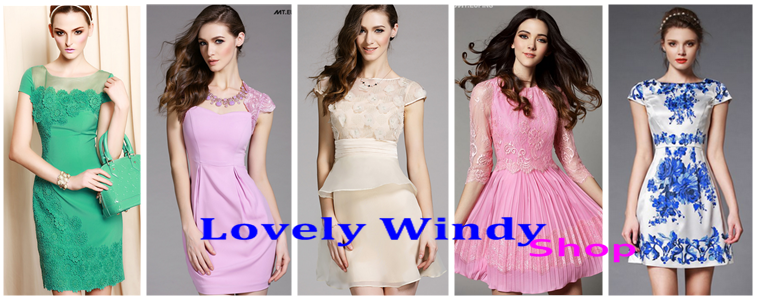 lovely_windy_shop