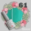 สีเจลทาเล็บ PEBEO ชุดรวม 90 สี แถมเล่มตัวอย่างสี พร้อมทาสีให้เรียบร้อย 1เล่ม thumbnail 66
