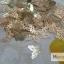 โลหะแผ่นทองเหลือง เลือกลายด้านใน thumbnail 2