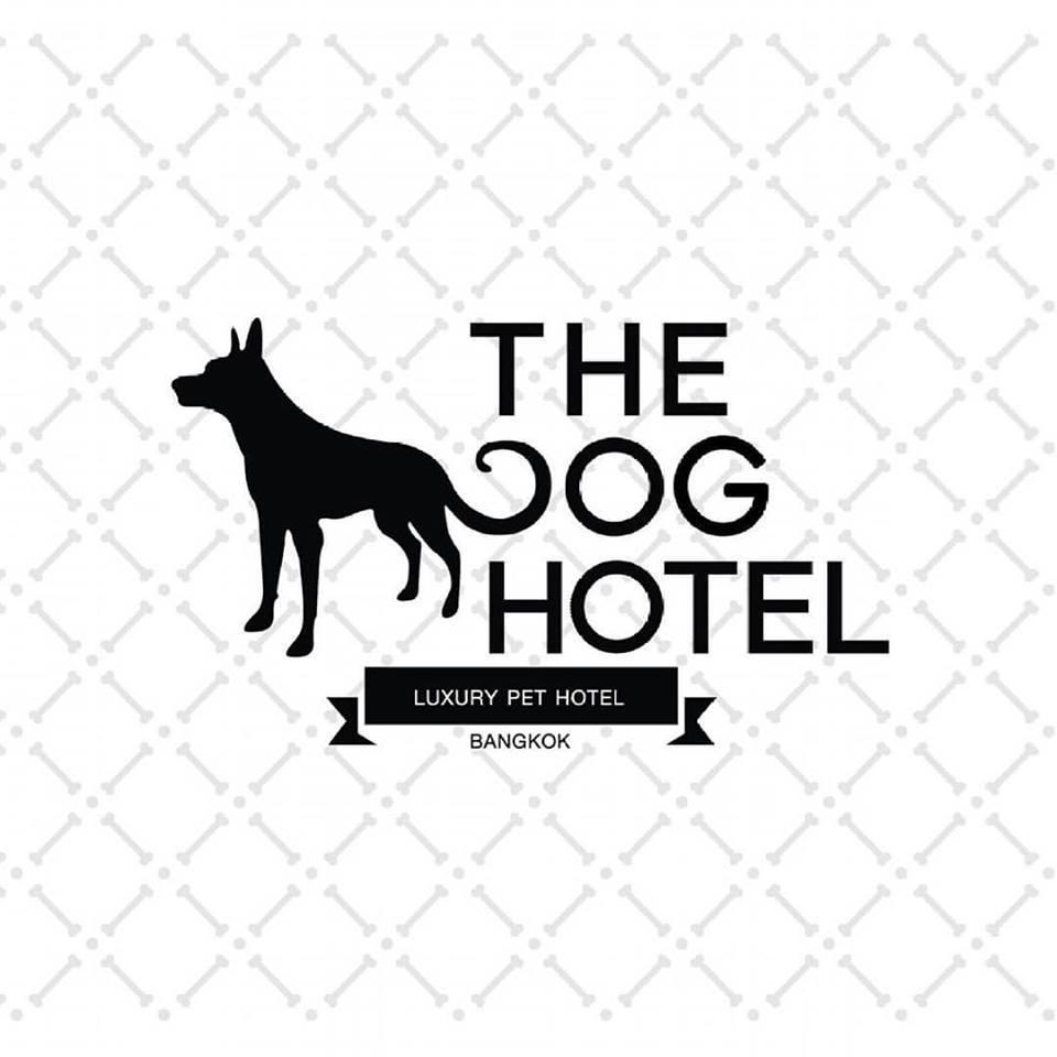 thedoghotelbkk