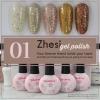 สีเจล Zhesi Gel Polish ชุด 5 ขวด กากเพชรผสมละเอียดและหยาบ สีเงินขาว เงิน ชมพู ทอง และ น้ำตาล