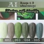 สีเจล AI ชุด Tibetan self identify มี 6ขวด โทนสีเขียวหม่น พร้อมแถมกรอบรูปในชุด